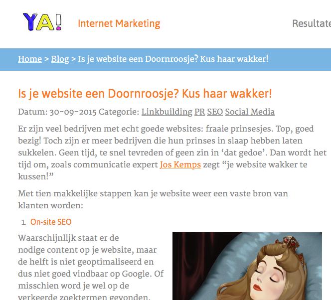 artikel over het wakker kussen van je website